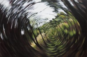 Forest Spin