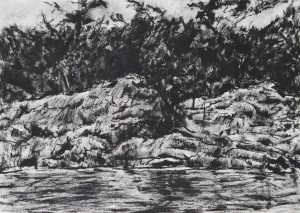 Paddling Along 2012 Charcoal 36x50