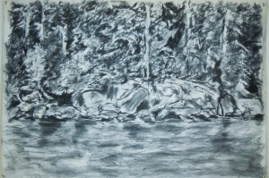 Water's Edge 2012 Charcoal 42x66